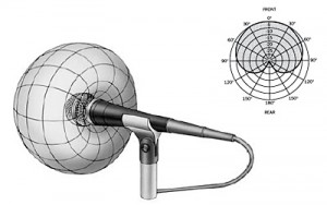 Unidirectional microphone pattern